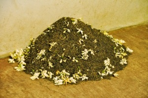 mix jasmine flowers and tea leaves